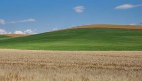 χρώματα Τοσκάνη στοκ εικόνα με δικαίωμα ελεύθερης χρήσης