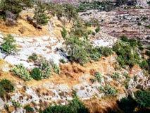 Χρώματα του Ισραήλ Στοκ εικόνα με δικαίωμα ελεύθερης χρήσης