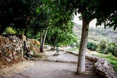 Χρώματα του Ισραήλ Στοκ φωτογραφίες με δικαίωμα ελεύθερης χρήσης