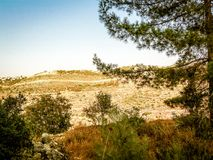 Χρώματα του Ισραήλ Στοκ Εικόνα