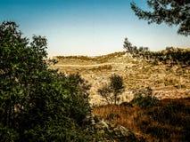 Χρώματα του Ισραήλ Στοκ Φωτογραφίες