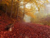 Χρώματα του φθινοπώρου Στοκ φωτογραφία με δικαίωμα ελεύθερης χρήσης