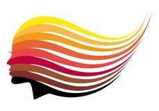 Χρώματα τρίχας, διανυσματική γυναίκα Στοκ Εικόνες