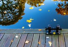 Χρώματα των φθινοπωρινών αντανακλάσεων στο νερό, δημόσιο πάρκο στη Ρήγα στοκ φωτογραφίες με δικαίωμα ελεύθερης χρήσης