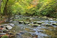 Χρώματα φθινοπώρου από έναν ειρηνικό ποταμό στα καπνώδη mtns. Στοκ φωτογραφία με δικαίωμα ελεύθερης χρήσης