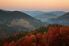 Χρώματα φθινοπώρου Δάσος βουνών Στοκ φωτογραφία με δικαίωμα ελεύθερης χρήσης