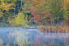 Χρώματα φθινοπώρου και ποταμός της Misty στοκ εικόνα με δικαίωμα ελεύθερης χρήσης