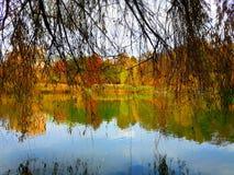 Χρώματα φθινοπώρου ομορφιάς Στοκ εικόνες με δικαίωμα ελεύθερης χρήσης