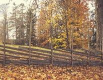 Χρώματα φθινοπώρου, παλαιός ξύλινος φράκτης με τα χρώματα φθινοπώρου δέντρα φύλλων φθινοπώρου Στοκ Φωτογραφίες