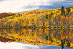 Χρώματα φθινοπώρου που απεικονίζονται στη λίμνη, Μινεσότα, ΗΠΑ Στοκ εικόνες με δικαίωμα ελεύθερης χρήσης
