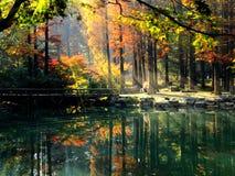Χρώματα φθινοπώρου που απεικονίζονται στη λίμνη Στοκ Φωτογραφία
