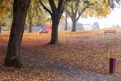 Χρώματα φθινοπώρου σε ένα πάρκο με τα φύλλα στο έδαφος στοκ εικόνα