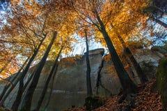 Χρώματα φθινοπώρου στους βράχους Στοκ φωτογραφία με δικαίωμα ελεύθερης χρήσης