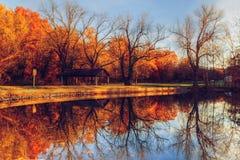 Χρώματα φθινοπώρου στο πάρκο Στοκ Εικόνα