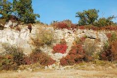 Χρώματα φθινοπώρου στο Carso στοκ φωτογραφία