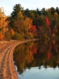 χρώματα φθινοπώρου Στοκ Εικόνες