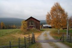 χρώματα autum Στοκ εικόνες με δικαίωμα ελεύθερης χρήσης