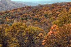 Χρώματα Shenandoah στοκ φωτογραφίες