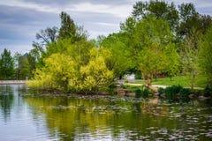 Χρώμα άνοιξη στη λίμνη στο πάρκο Patterson, στη Βαλτιμόρη, Maryla στοκ φωτογραφίες