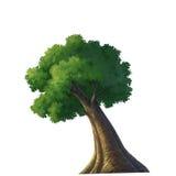 χρώμα δέντρων Στοκ φωτογραφία με δικαίωμα ελεύθερης χρήσης