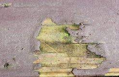 χρώμα ανασκόπησης που ξεφλουδίζεται Στοκ Εικόνες