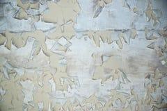 Χρώμα αποφλοίωσης στη σύσταση υποβάθρου τσιμέντου Στοκ Φωτογραφία