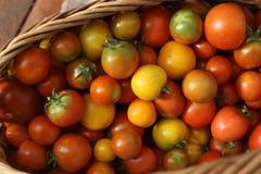 Χρώμα, ντομάτες, καλάθι, καλοκαίρι, κόκκινο, κίτρινο, σύσταση, ακατέργαστος, φυσική, συστατικό, λαχανικό, Στοκ Εικόνες