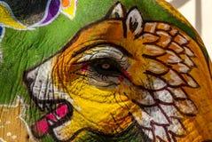 Χρώμα προσώπου τιγρών, καμβάς ελεφάντων Στοκ εικόνες με δικαίωμα ελεύθερης χρήσης