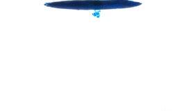 Χρώμα στο ύδωρ Στοκ Εικόνα