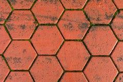 Χρώμα τερακότας κεραμιδιών επίστρωσης υπό μορφή hexagons Στοκ φωτογραφίες με δικαίωμα ελεύθερης χρήσης