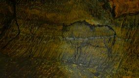 Χρώμα του ανθρώπινου κυνηγιού των deers, του μαμούθ και του ταράνδου Ιστορική μαύρη αφηρημένη τέχνη άνθρακα στη σπηλιά ψαμμίτη στ απόθεμα βίντεο
