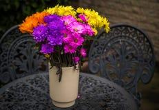 Χρώμα του φθινοπώρου Στοκ εικόνα με δικαίωμα ελεύθερης χρήσης