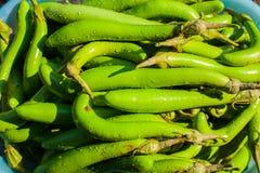 Χρώμα του φυσικού πράσινου φρέσκου φυσικού δέρματος της μελιτζάνας στοκ φωτογραφίες