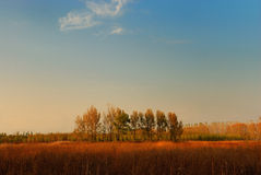 χρώμα φθινοπώρου Στοκ Φωτογραφία