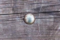 Χρώμιο γύρω από το κεφάλι από μια βίδα σε έναν ξύλινο πίνακα στοκ φωτογραφία με δικαίωμα ελεύθερης χρήσης
