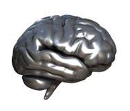 χρώμιο εγκεφάλου Στοκ εικόνα με δικαίωμα ελεύθερης χρήσης