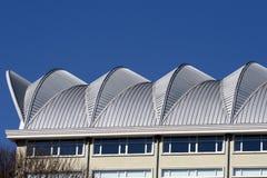 χτίζοντας στέγη Στοκ εικόνες με δικαίωμα ελεύθερης χρήσης