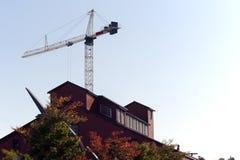 χτίζοντας το γερανό ξύλιν&omicro Στοκ Εικόνες