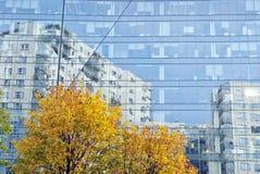 χτίζοντας Windows γραφείων γυα&l Στοκ Φωτογραφίες