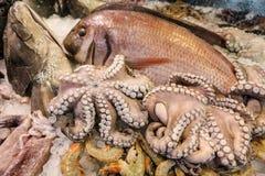 Χταπόδι για την πώληση στην ελληνική αγορά ψαριών Στοκ φωτογραφίες με δικαίωμα ελεύθερης χρήσης