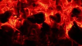 Χτυπήματα αέρα πυρκαγιάς τέφρας απόθεμα βίντεο