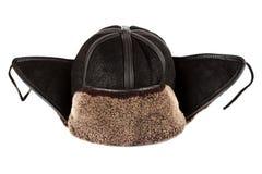 Χτυπήματα αυτιών χειμερινών καπέλων στοκ εικόνες