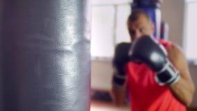 Χτυπήματα στο αχλάδι κατάρτισης απόθεμα βίντεο