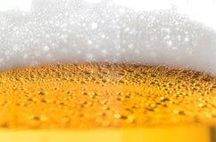Χυμένη κινηματογράφηση σε πρώτο πλάνο μπύρας Στοκ φωτογραφίες με δικαίωμα ελεύθερης χρήσης