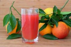 Χυμός από τα πορτοκάλια αίματος Τεμαχισμένα πορτοκάλια Στοκ εικόνα με δικαίωμα ελεύθερης χρήσης