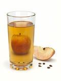 Χυμός και μήλα της Apple Στοκ Φωτογραφίες