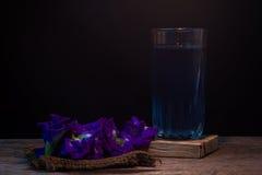Χυμός και λουλούδια μπιζελιών πεταλούδων σε ένα πίσω υπόβαθρο Λουλούδι αλλά Στοκ Φωτογραφίες