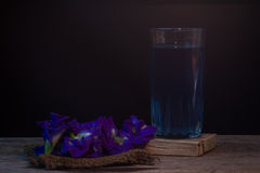 Χυμός και λουλούδια μπιζελιών πεταλούδων σε ένα πίσω υπόβαθρο Λουλούδι αλλά Στοκ Εικόνα