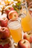 Χυμός, μήλα και φύλλα σφενδάμου της Apple Στοκ Εικόνες