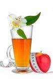 Χυμός μήλων και μήλο Στοκ εικόνες με δικαίωμα ελεύθερης χρήσης